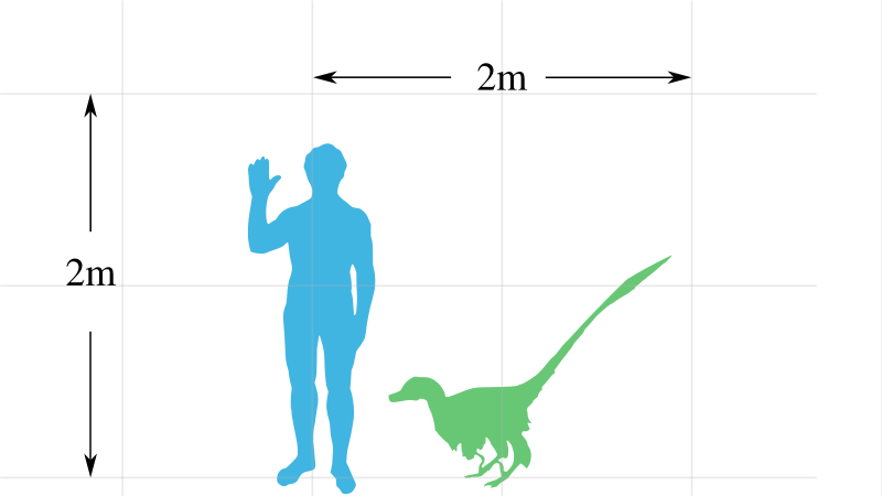 funny real dinosaurs