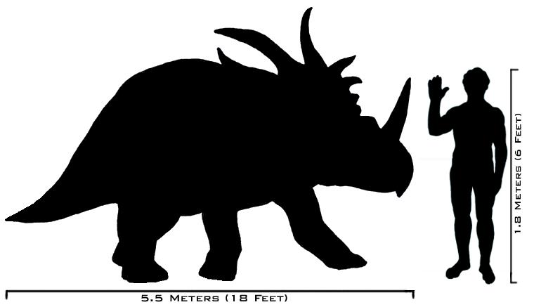 الحيوانات المنقرضه human-styracosaurus_