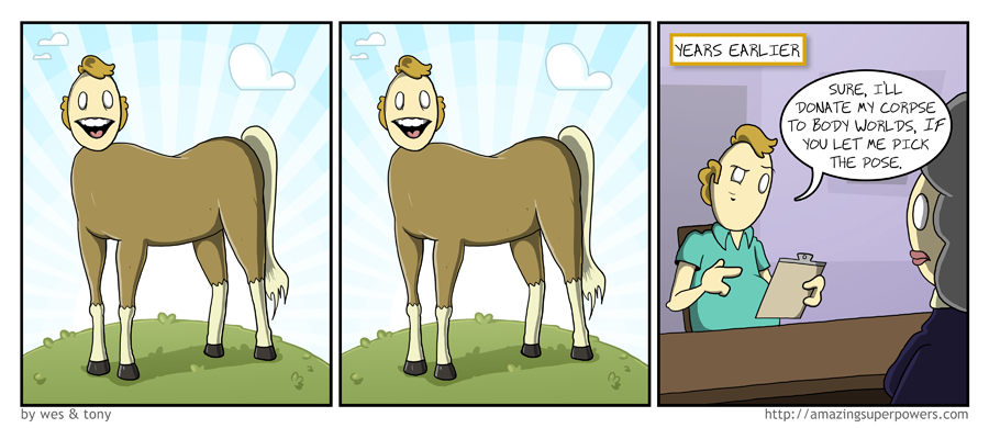 It's nice because it means a horse somewhere got HIS wish.